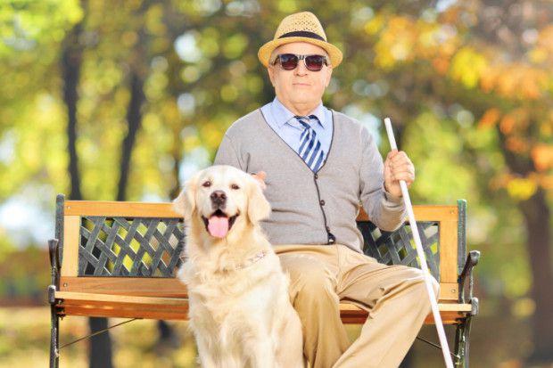 cane-guida-ciechi