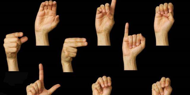 lingua dei segni (lis)